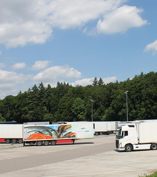 truck trailer wartung und reparatur mezger rent service. Black Bedroom Furniture Sets. Home Design Ideas